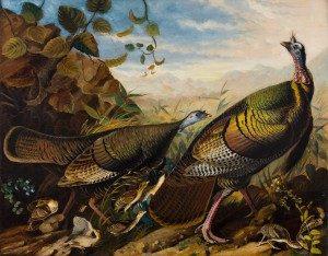Wild Turkey Cock, Hen and Young, 1826 John James Audubon Oil on linen