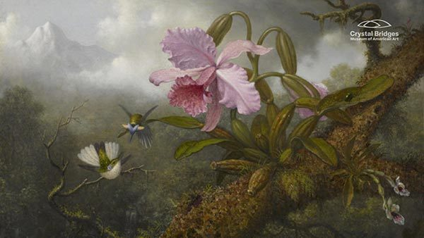 Cattleya Orchid, Two Hummingbirds and a Beetle by Martin Johnson Heade