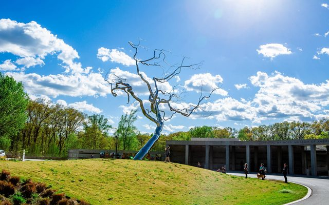Roxy Paine, Yield - stainless steel tree sculpture