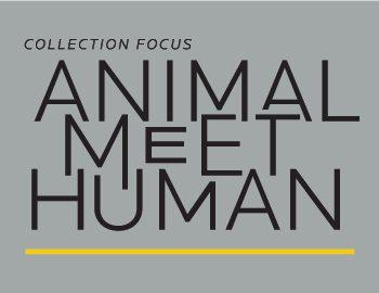 Animal Meet Human