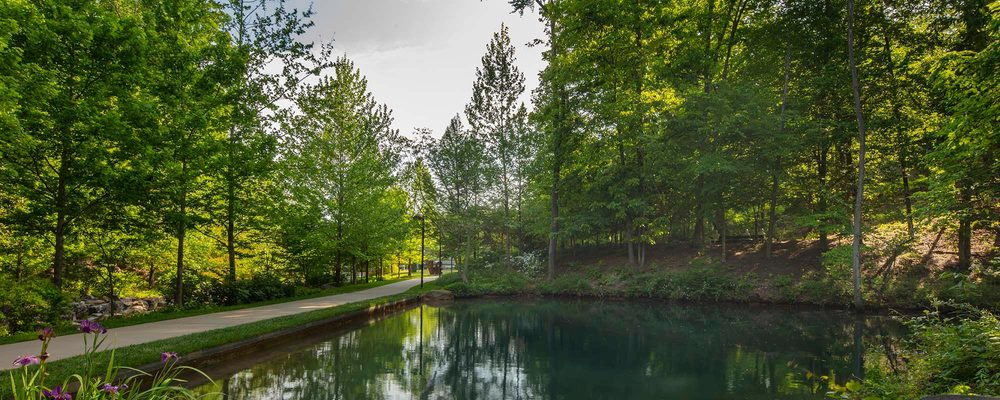 Crystal Bridges grounds with pond