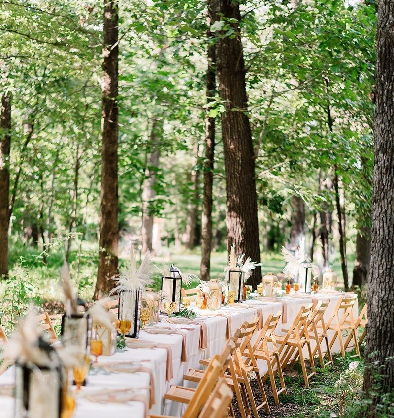 Long table with chairs in forest