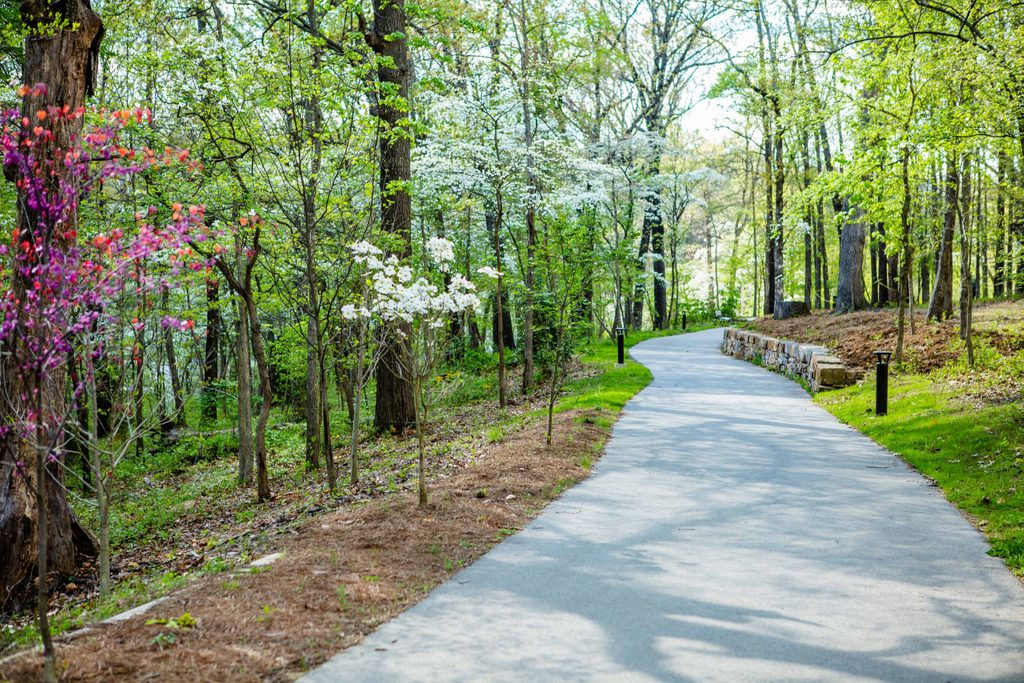 Paved nature trail in spring with blooming trees