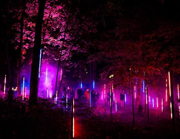 North Forest Lights Experience
