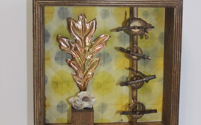 Laurie Foster shadow box assemblages
