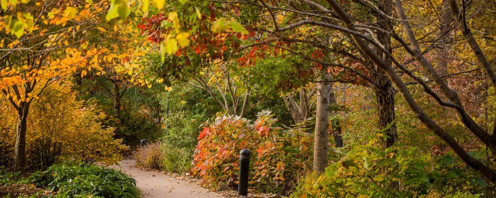 trail at crystal bridges in autumn