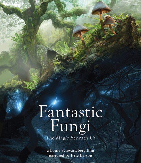 Fantastic Fungi movie poster
